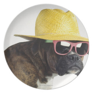 Boxer dog with hat and glasses plate