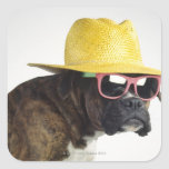Boxer dog with hat and glasses square stickers