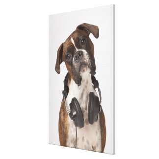 boxer dog with headphones canvas print