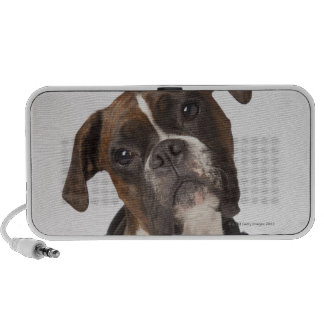 boxer dog with headphones portable speakers