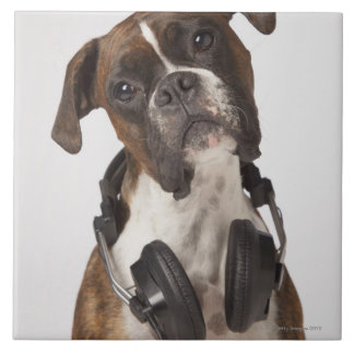 boxer dog with headphones tile