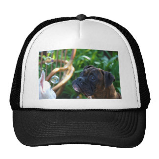 Boxer dogs and bubbles cap trucker hat
