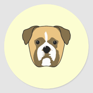 Boxer Dogs Face. Classic Round Sticker