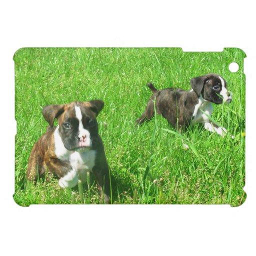 Boxer dogs ipad Mini Case