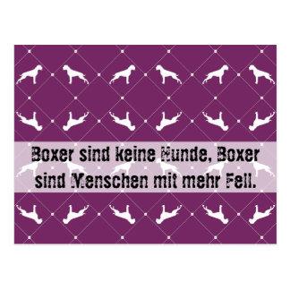 Boxer dogs postcard