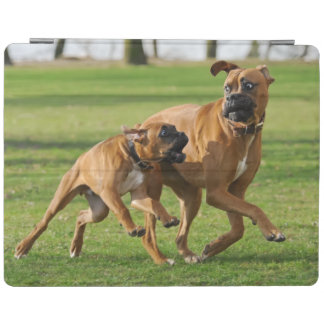 Boxer dogs run a funny race iPad smart cover