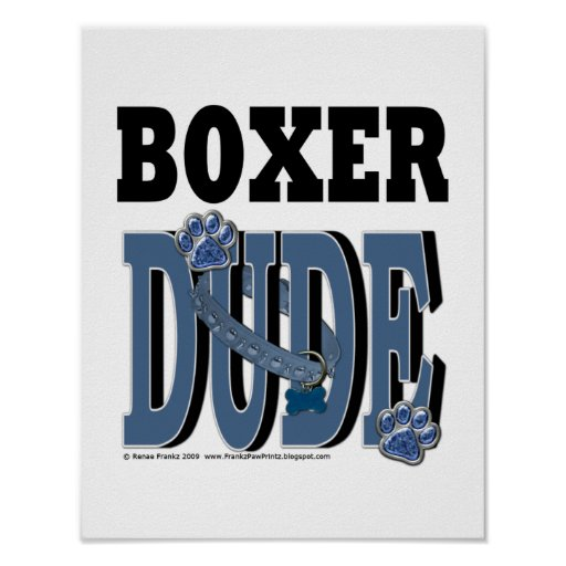 Boxer DUDE Poster