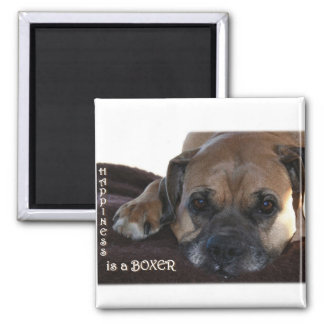 Boxer:  Happiness is a Boxer Magnet