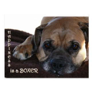 Boxer:  Happiness is a Boxer Postcard
