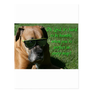 Boxer:  Hard to be Humble Postcard