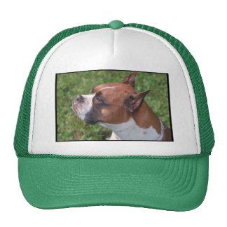 Boxer Trucker Hats