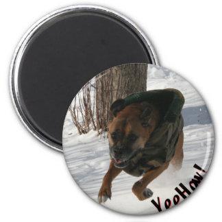 Boxer: Having a Rip-Snortin' Good Time Magnet