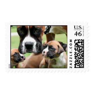 Boxer - Helicopter Mom Stamp