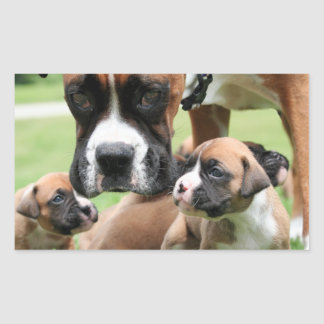 Boxer - Helicopter Mom Rectangular Stickers