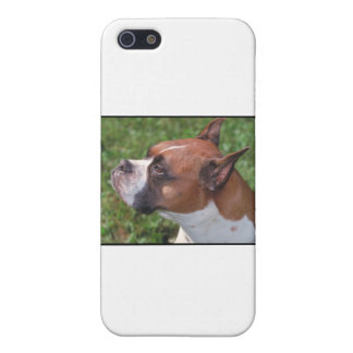 Boxer iPhone SE/5/5s Cover