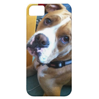 Boxer Love iPhone 5 Covers