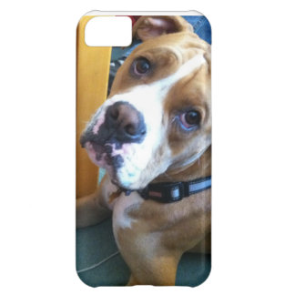Boxer Love iPhone 5C Covers