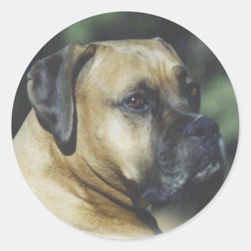 Boxer:  Love is a Boxer Classic Round Sticker
