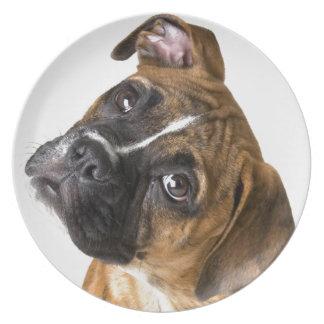 Boxer Love Plate