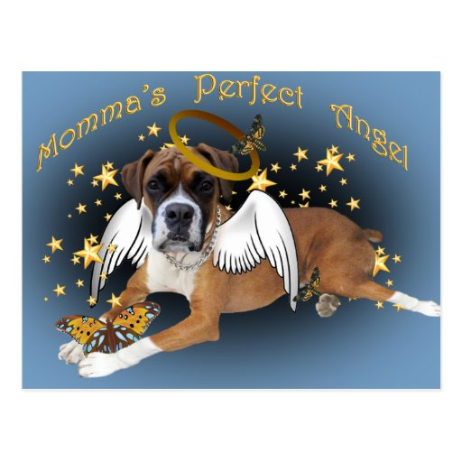 Boxer Momma's Angel apparel and gifts Post Cards