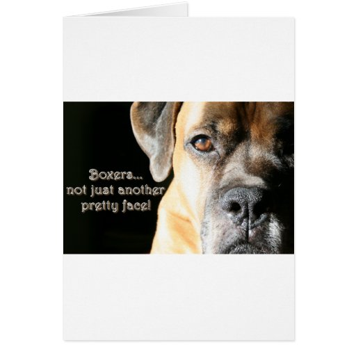 Boxer:  Not Just Another Pretty Face Greeting Card