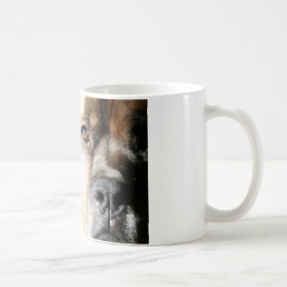 Boxer:  Not Just Another Pretty Face Mugs