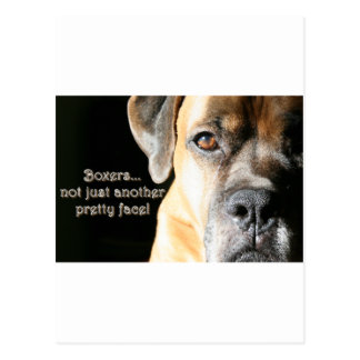 Boxer:  Not Just Another Pretty Face Postcard
