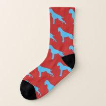Boxer of dogs socks