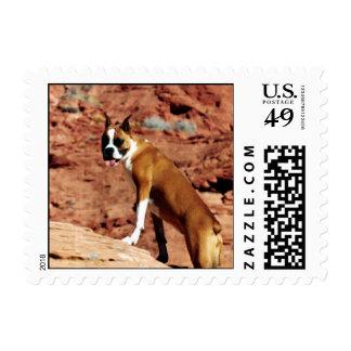 Boxer Postage