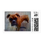 Boxer Postage Stamps