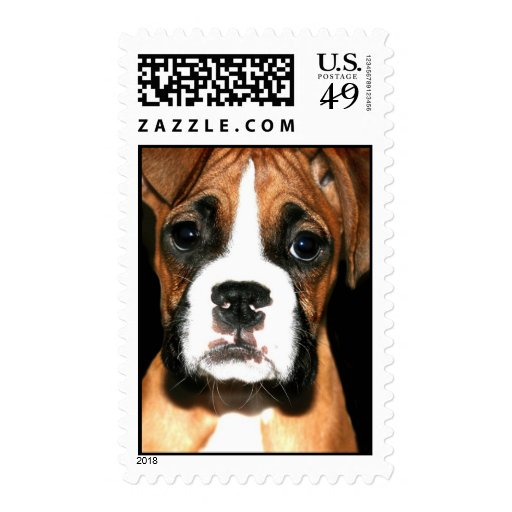 Boxer pup stamp