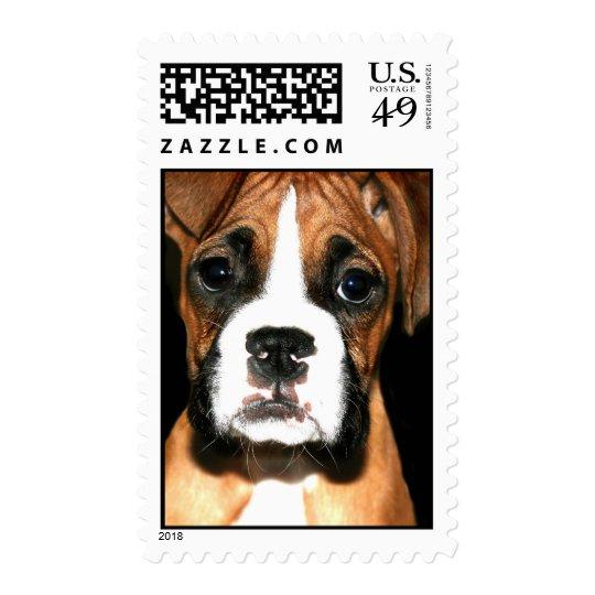 Boxer pup stamp