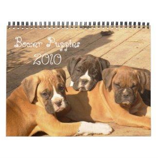 Boxer Puppies 2010 Calendar calendar