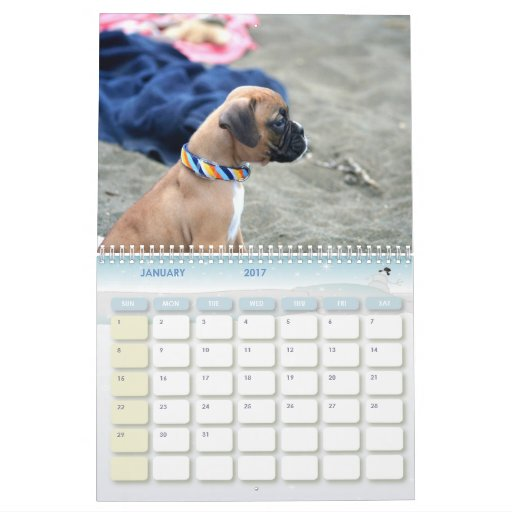 Boxer Puppies 2011 Calendar