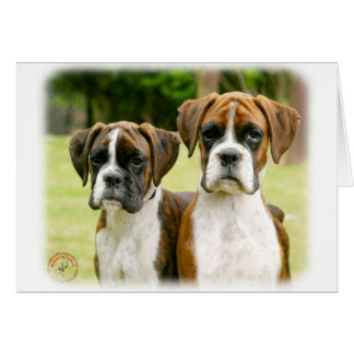 Boxer puppies 9Y049D-064 Greeting Card