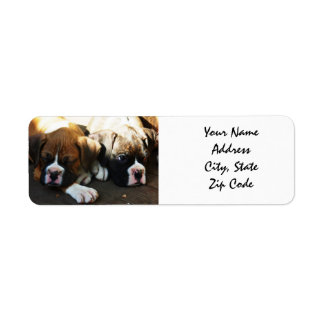 Boxer Puppies Address Labels