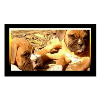 Boxer puppies business cards
