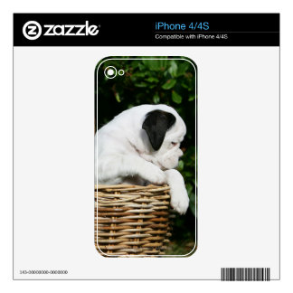Boxer Puppies in Basket Decal For The iPhone 4S