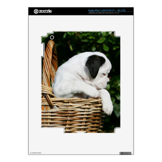 Boxer Puppies in Basket Decals For iPad 3