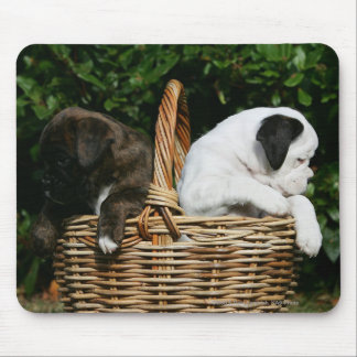 Boxer Puppies in Basket Mouse Pad