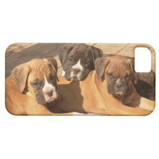Boxer puppies iPhone 5 Barely There Universal Case