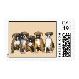 Boxer Puppies Postage