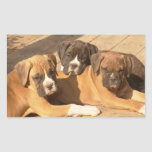 Boxer puppies stickers