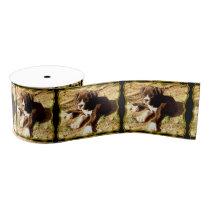 "Boxer puppy 3"" grosgrain ribbon"