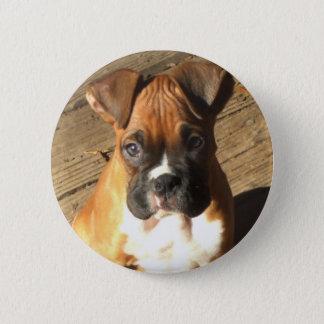 Boxer Puppy button