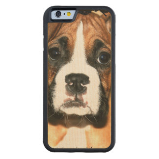 Boxer puppy carved® maple iPhone 6 bumper