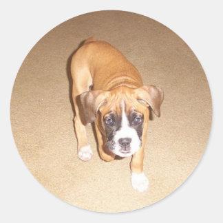 Boxer Puppy Classic Round Sticker