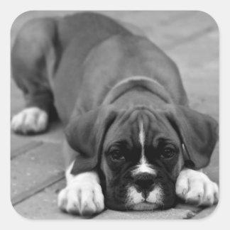 Boxer Puppy Dog Black And White Sticker / Seal