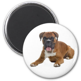 Boxer Puppy Dog Fridge Magnet Fridge Magnets