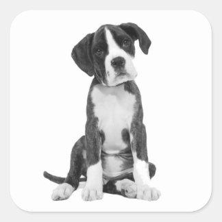 Boxer Puppy Dog Greeting Sticker